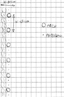 Uno schema per l'appezzamento di peperoni, tanto per rendere l'idea. Il fosso è a sinistra di chi osserva, accanto alle piante.