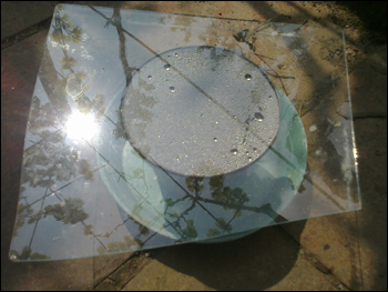 Il vetro serve a trattenere l'umidità: vedete com'è imperlato? Anche i semi gradiscono i posti caldi, stretti e umidi...^_*